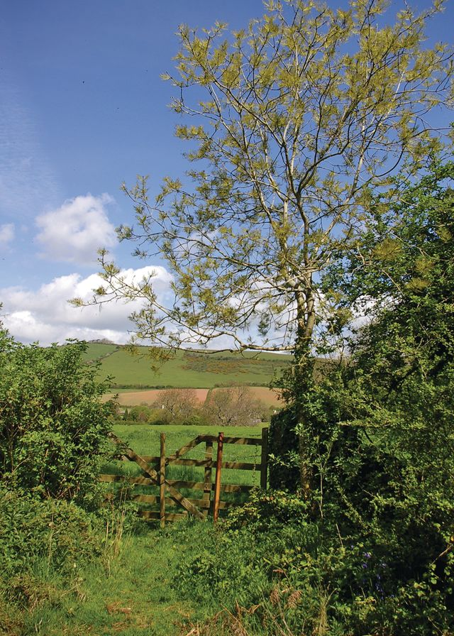Whitehill Country Park