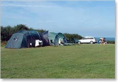 Point Lynas Caravan Park